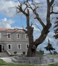 BYZANTINE MUSEUM OF PHTHIOTIS